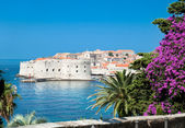 A panoramic view of an old city of Dubrovnik — Stock Photo