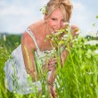 Young beautiful woman on the daisy flowers field — Stock Photo #9195582