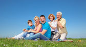 Happy family on picnic in park — Stock Photo
