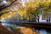River Dussel in Dusseldorf — Stock Photo