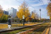 осень в дюссельдорфе, германия — Стоковое фото
