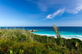 Landscape of Bermuda — Stock Photo