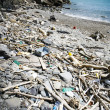 Royalty-Free Stock Photo: Spiaggia discarica