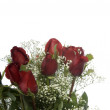 Bouquet of Red Roses — Stock Photo #8351165