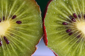 Macro kiwi — Stock Photo