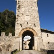 Medieval  Gate and tower — Stock Photo
