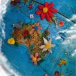 Stock Photo: Flowered Australia and New Zeland