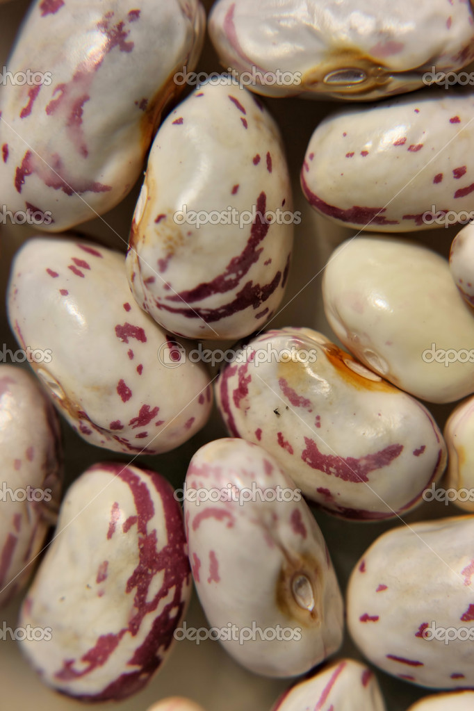 Macro shot of some fresh haricot beans — Stock Photo #8043485