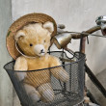 Teddy bear — Stock Photo #8060197