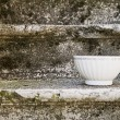 Stock Photo: Empty Vintage bowl,