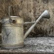 Vintage watering can — Stock Photo #8086979