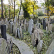 Headstones in the Jewish cemetery — Stock Photo