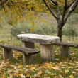 Stock Photo: Picnic place in forest