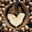 Loving Nuts — Stock Photo