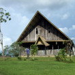Traditional Papuasian House — Stock Photo