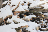 Firewood under snow — Stock Photo