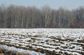 Plowed soil covered in snow — Stock Photo