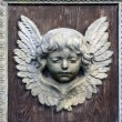 Cherub — Stock Photo #9986851