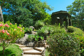 Botanical Garden in Rio de Janeiro — Stock Photo