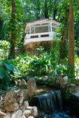 Pergola e cascata nel giardino botanico di rio de janeiro — Foto Stock
