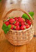 Le panier de fraises — Photo