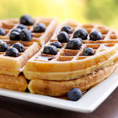 Waffles with blueberries — Stock Photo