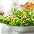 Leafy green salad with croutons — Stock Photo #8634552