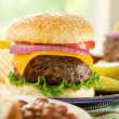 Hamburger meal — Stock Photo #8638384