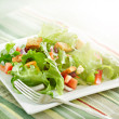 Salad with beaming sunlight — Stock Photo