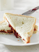 Peanut butter and jelly sandwhich — Stock Photo
