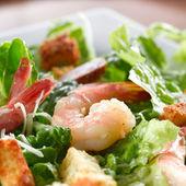 Karides ıspanak salatası — Stok fotoğraf