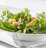Grüner blattsalat mit croutons — Stockfoto