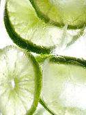 Lime slices in ice macro — Stock Photo