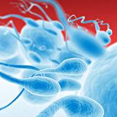 Sperm going for the egg — Stock Photo