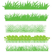 The green grass, shrubs — Stock Vector