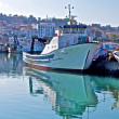 Fishing boat in fishing port of Jijel, Algeria — Stock Photo