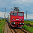 Electrified train with cloudy sky and grass — Stok fotoğraf
