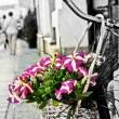 Flower bouquet on a bicycle in Cluj-Napoca, Romania — Stock Photo