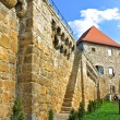 Castle in Cluj-Napoca, Romania — Stock Photo