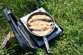 The river fish grilled — Stock Photo