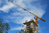 The work of a tower crane on erection of the cathedral — Stock Photo
