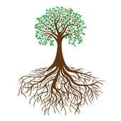 árvore com raízes e folhagem densa, vetor — Vetorial Stock