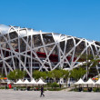 "Beijing National Stadium ""Bird's Nest"". — Stock Photo"