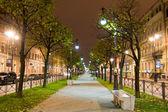 Night avenue. Saint Petersburg, Russia — Stock Photo