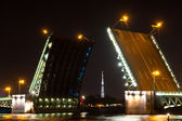 Night view of Palace Bridge (Dvortsoviy Most). St. Petersburg, Russia. — Stock Photo