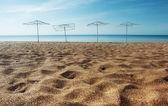Parasols on the sandy beach — Stockfoto