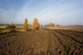 A plowed field in the autumn — Stock Photo