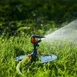 Watering the lawn — Stock fotografie