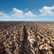A plowed field on blue sky background — Stock Photo