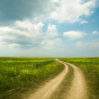 Field winding road through the green meadow — Stock Photo #8992586